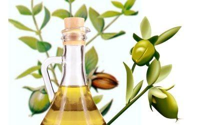L'huile végétale de jojoba bio pour cheveux